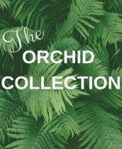 The Orchid Collection